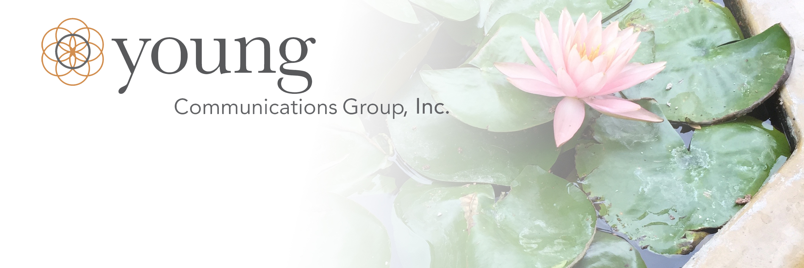 Projects – Young Communications Group, Inc
